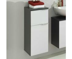 Badezimmer Unterschrank in Weiß Anthrazit  hängend