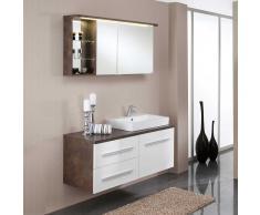 Spiegelschrank in Rost Optik mit Waschtisch (2-teilig)