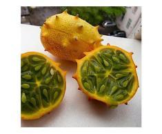 Egrow 20 Teile / paket Kiwano Melone Samen Afrikanische Gurkensamen Garten Gewächshaus Gemüse Obst Pflanzen-Saatgut
