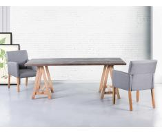 Esstisch Grau - Küchentisch - Esszimmertisch - 200x100 cm - MOORE