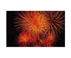 Fototapete bunt, L/B: 280cm / 450cm, »Feuerwerk«, FSC®-zertifiziert, rasch
