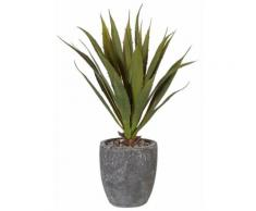Home affaire Kunstpflanze »Agave« grün