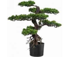 Home affaire Kunstpflanze grün, »Bonsai«