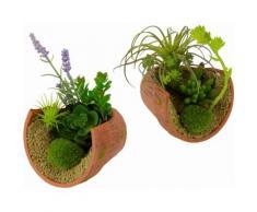 Home affaire Kunstpflanze »Succulente« grün