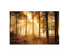 Wandbild Wald (68x100, Glasoptik, selbstklebend)