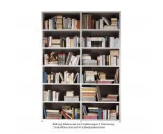 Bücherwand 2.1 Sockelboden schmal Eiche