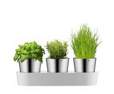 Herbs@Home Kräutergarten Blumentopf 3er-Set