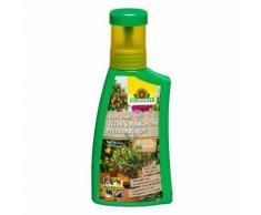 Neudorff BioTrissol Plus Zitrus- und Mediterranpflanzen-Dünger, 250 ml