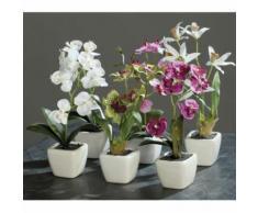ROLLER Mini-Orchidee - Kunstpflanze - 5-fach sortiert