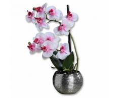 ROLLER Orchidee-Phalaenopis - Kunstblume - pink-weiß - 30 cm