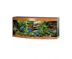 Aquarium »Vision in buchefarben«