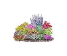 beet & balkonpflanze »set 4-jahreszeiten«