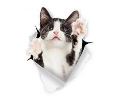 Winston & Bear 3d Katzenaufkleber - 2er Pack von schwarz-weißer Smoking Katzenaufkleber für die Wand - Kühlschrank - WC - Raum - Auto - Einzelhandelsverpackung