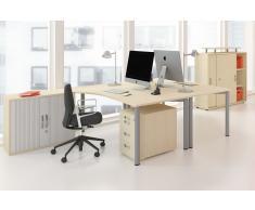 GERAMÖBEL Büromöbel Set, Doppelarbeitsplatz, 450x260cm