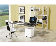 ENTER Büromöbel Set, 1 Arbeitsplatz 250x300