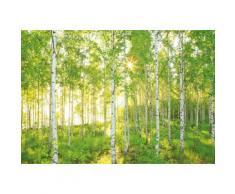 Fototapete, Komar, »Sunday«, 368/254 cm, grün, grün