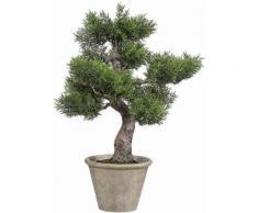 Home affaire Kunstpflanze »Bonsai Zender«, grün