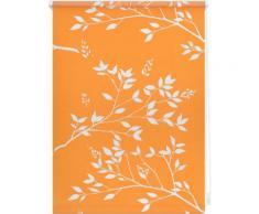 Seitenzugrollo, Lichtblick, »Klemmfix Dekor Ficus«, Lichtschutz, Fixmaß, ohne Bohren, orange, orange