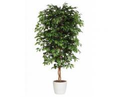 Premium collection by Home affaire Kunstpflanze »Ficus Benjamini«, grün, Unisex