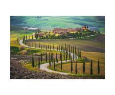 Home affaire Fototapete »Fields in Tuscany«, 350/260 cm, grün, grün/braun