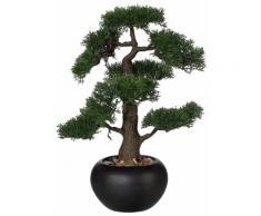 Home affaire Kunstpflanze »Bonsai«, grün