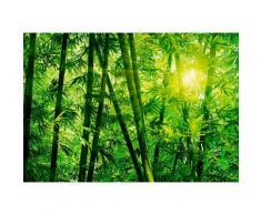 Home affaire Fototapete »Bambus Wald«, 366/254 cm, grün, grün