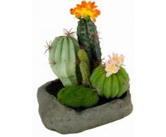 Home affaire Kunstpflanze »Kakteen« im Stein, orange, orange