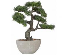 Premium collection by Home affaire Kunstpflanze »Bonsai«, grün