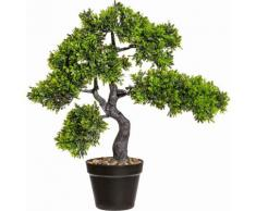 Deko Bonsai Teeblatt im Topf, grün, grün