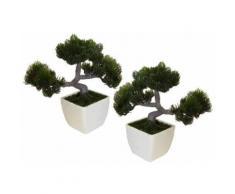 Home affaire Kunstpflanze »Bonsai« (2-tlg.), schwarz, schwarz