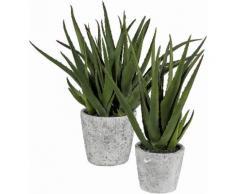 Home affaire Kunstpflanze »Aloe im Zementtopf«, grün