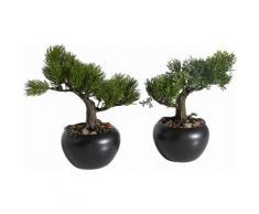 Home affaire Kunstpflanze »Bonsai« (2er Set), grün