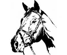 Wandtattoo, Home affaire, »Pferdekopf«, in 2 Größen, braun, braun