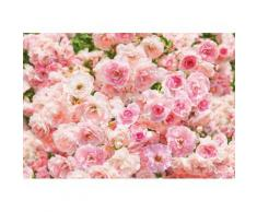 Fototapete, Komar, »Rosa«, 368/254 cm, rosa, rosa