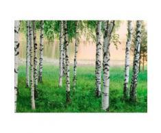 Home affaire Fototapete »Nordischer Wald«, 366/254 cm, grün, grün