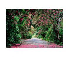 Komar Fototapete »Wicklow Park«, 368/254 cm, bunt, grün/violett