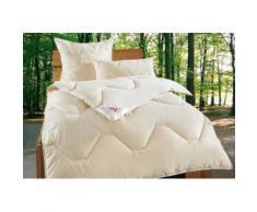 My Home Kissen »Baumwolle 60 °C«, 100% natürliche Materialien