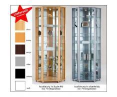 Ausstellungsvitrine Eckvitrine mit Beleuchtung und Spiegel in vielen Farben