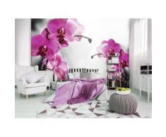 Fototapete - Rosa Orchidee - Vlies - Laminiert - 10155_Mlven