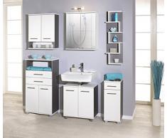 Schildmeyer 118030 Hängeschrank 60 x 70,5 x 20,5 cm, weiß / esche grau Dekor