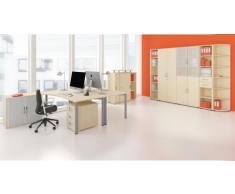 Gera Möbel Schranksystem Flex Flügeltürenschrank, Drehtürenschrank, Holzdekor, Ahorn/Ahorn, 80 x 42 x 180.8 cm