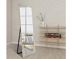 Mir*dfgh Simple Dressing Mirror Ganzkörperspiegel Bodenspiegel Schlafzimmerspiegel Bekleidungsgeschäft Spiegel 0602 (Color : Silver, Size : 50cm*150cm)