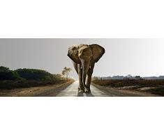 Beauty.Scouts Wandspiegel Luanda, Spiegel, Digitaldruck, Elefant, Strasse, Afrika, Bäume, schwarz, Schlafzimmer, Wohnzimmer, Jugendzimmer, Flur, Diele, mit Aufhänger, 50x140cm