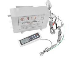 Dampfgenerator Dampferzeuger 2,8 kW Dampfdusche Dampfgerät LXW-MK-008