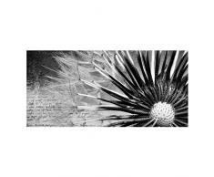 Apalis 108822 Magnettafel Pusteblume Memoboard Design Quer Metall Magnet Pinnwand Motiv Wand Stahl Küche Büro, 37 x 78 cm, schwarz / weiß