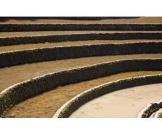 MAIYOUWENG Wooden Adult Jigsaw 1000 Stück Terrassenpflanze Landschaft Sehr Anspruchsvolle Erwachsene Und Teenager Casual Jigsaw Puzzle, Large Size Puzzle
