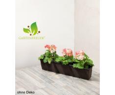 GARTENFREUDE Polyrattan Balkonkasten Blumenkasten inkl. Aufhängung, 80 x 19 x 18 cm, mit Bewässerungssystem, mocca
