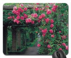 Pink Rose Gartenlaube Mauspad, Mousepad (Blumen Mauspad)