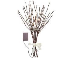Northpoint LED Frühlingszweige Pflanze Dekozweige Weidenzweige Weidenkätzchen Lichterzweige Dekoration 50cm hoch Timerfunktion inkl. Batterien 18 warmweiße LED
