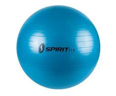 Spirit Gymnastikball Ø 55 Sitzball Fitnessball Yogaball Bürostuhl Ball + Pumpe